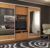 Стильный шкаф купе в гостиную