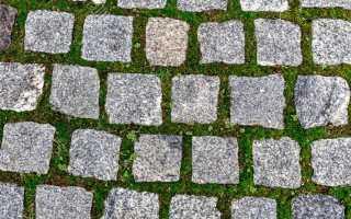 Трава на тротуарной плитке уничтожить