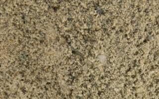 Песок для тротуарной плитки фракция
