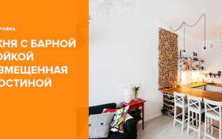 Барная стойка разделяющая кухню и гостиную