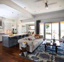 Зона кухни и гостиной в одной комнате