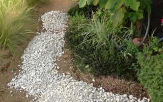Фото садовых дорожек из брусчатки