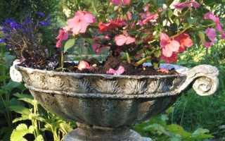 Садовые вазы своими руками из цемента