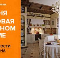 Кухня совмещенная с столовой в частном доме